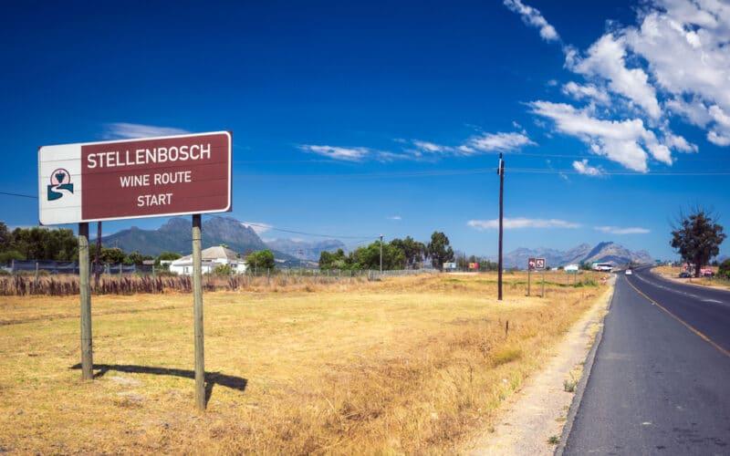 Stellenbosch Wine Route strada del vino Wine Tasting Cape Town Sudafrica